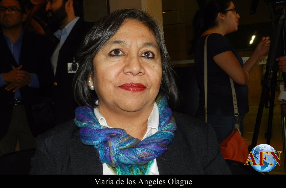 Resultado de imagen para María de Los Ángeles Olague AFN
